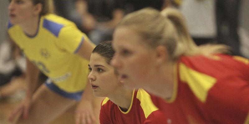 Press: Victory against Sweden